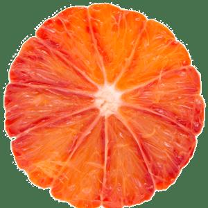arancia-tarocco-ippolito